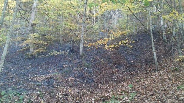 قسمتی از جنگل ابر آتش گرفت، 3 اکیپ از منابع طبیعی اعزام شد