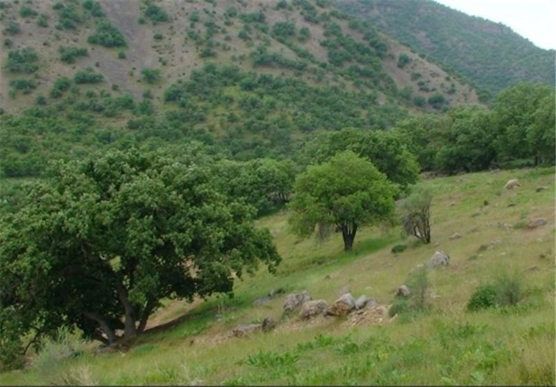فرماندار ساری: طرح مالی استان های سمنان و مازندران با پیوست گردشگری ایجاد می گردد