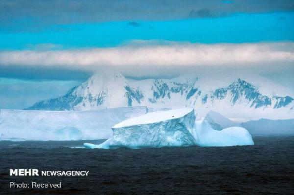 کرونا به قطب جنوب رسید