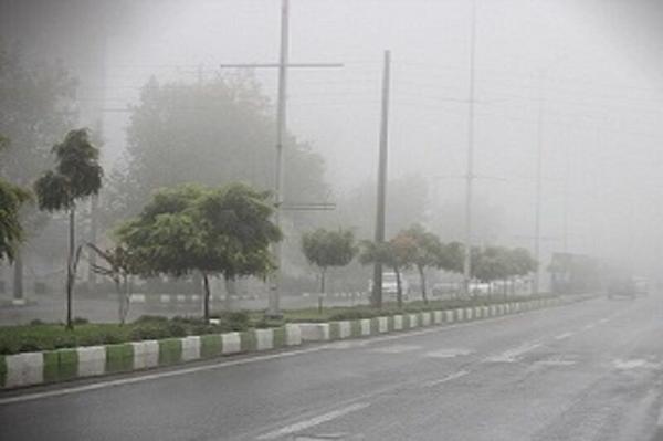 خبرنگاران هواشناسی برای بوشهر مه صبحگاهی پیش بینی کرد