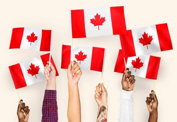 ویزای کانادا: چرا کانادا برای تحصیل برترین گزینه است؟