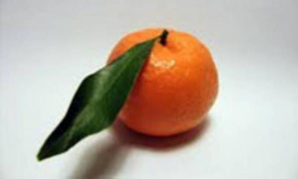 خوابی آرام با نارنگی