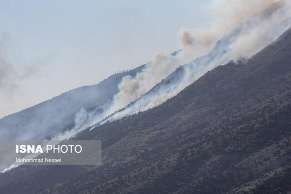 آتش سوزی در جنگلهای کوه سفید شهرستان لنده